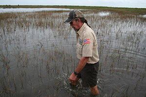 Mann im Sumpfgebiet der Everglades