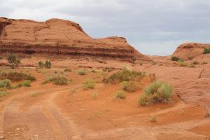 beige Felsblöcke, umgeben von einigen Wüstenpflanzen