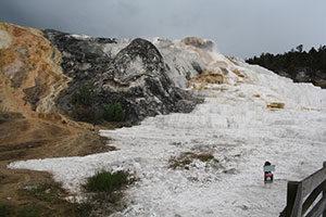 unterschiedlich farbiges und schwefeliges Naturwunder im Yellowstone Nationalpark